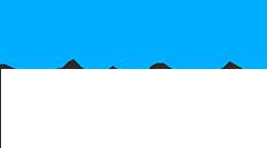 Cyan Bear Logo